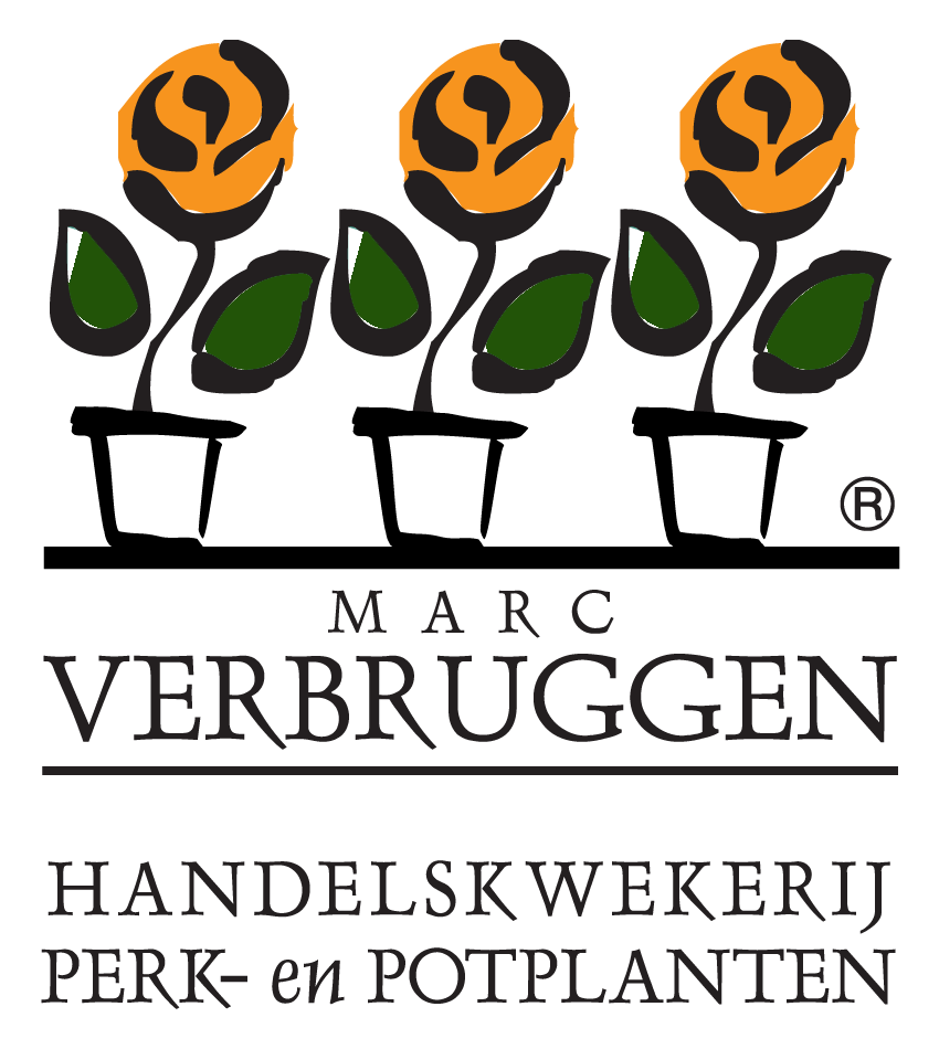 Marc Verbruggen logo